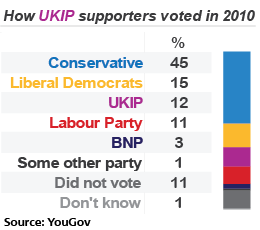UKIP voters in 2010