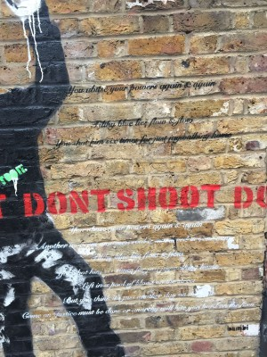Close up of Don't Shoot (pic credit Martin Smith)